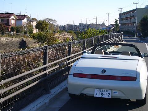 blog_916_3.JPG