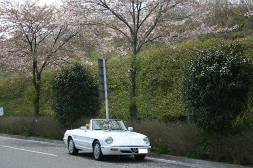 blog115_09.04.12_01.JPG